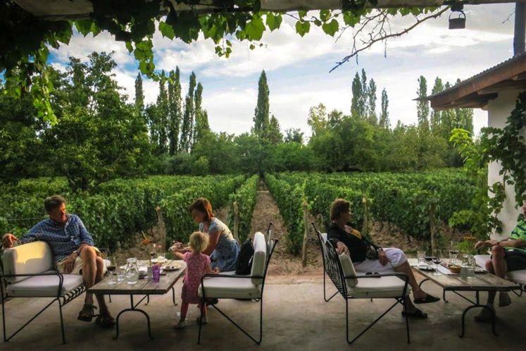 Mendoza's wine route | Finca Adalgisa