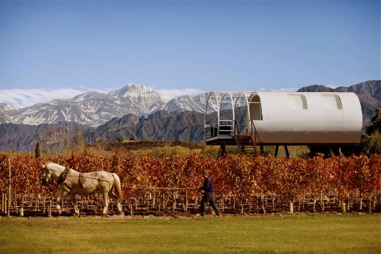 Mendoza's wine route | Entre Cielos