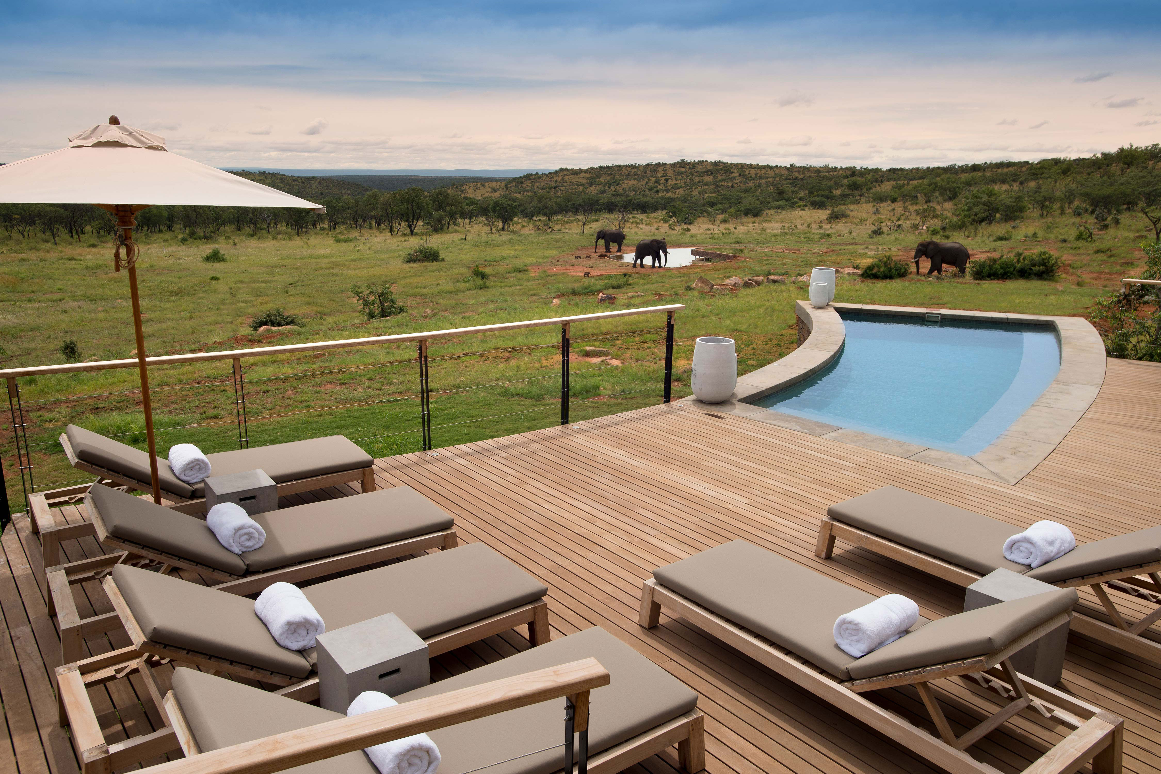 Luxury villas for family holidays | Mhondoro, South Africa | Mr & Mrs Smith Editorial